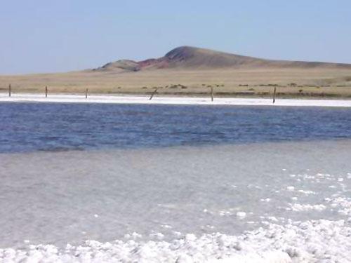 экскурсия на уникальное соленое озеро Баскунчак